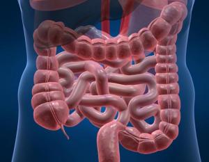 pulizia-intestinale